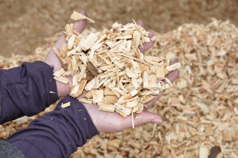 [FABRIQUE ENERGETIQUE] Atelier énergies renouvelables n° 5 : le bois énergie